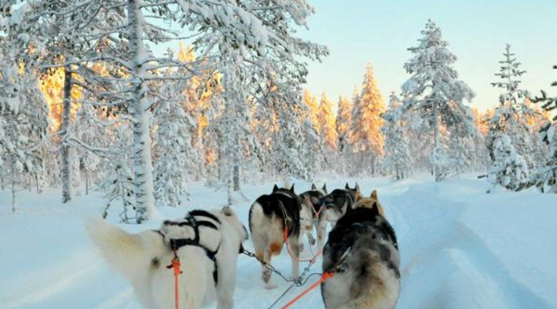 gruppenreise-finnland