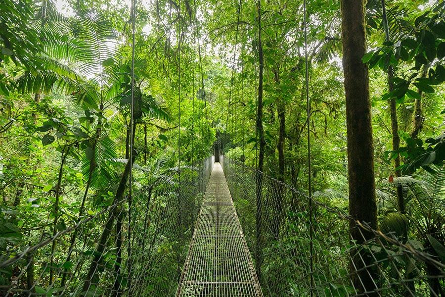 waldnebelreservat-haengebruecke-monteverde-costa-rica